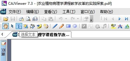 CAJViewer复制文字方法 怎么复制文字