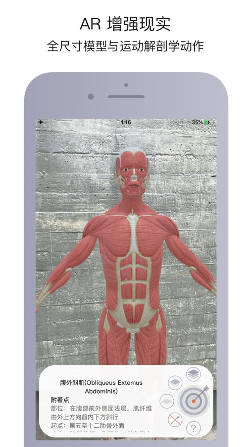 运动解剖app