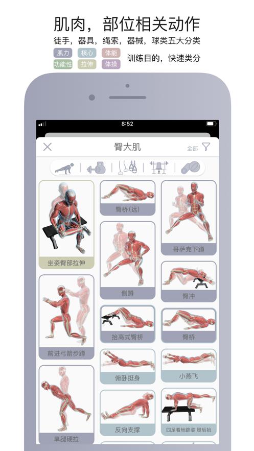 运动解剖官方版