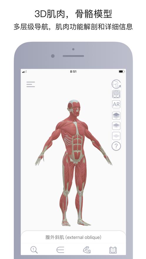 运动解剖应用