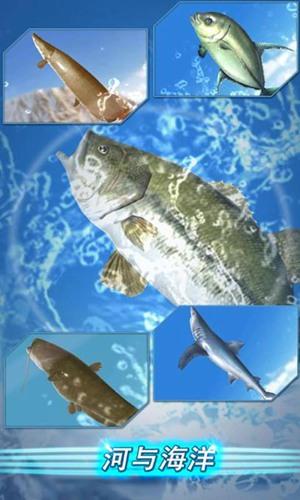 钓鱼的季节下载