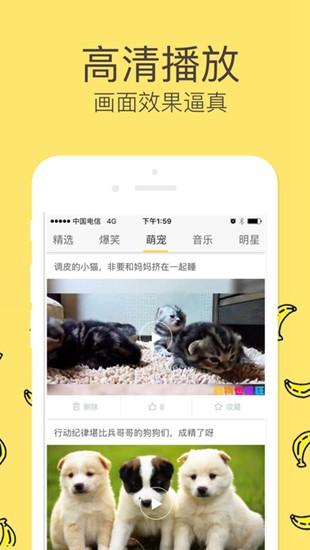 香蕉视频官网免费下载安装