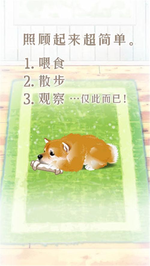 养育柴犬的治愈游戏安卓版下载
