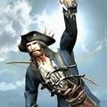 海盗英雄中文版