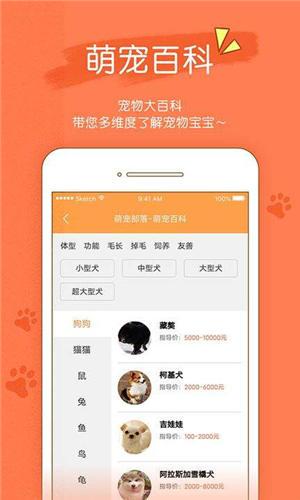 宠物部落app下载