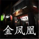 孙美琪疑案金凤凰安卓最新版