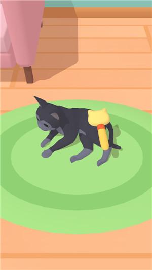 宠物治愈屋3d手机版完整版下载
