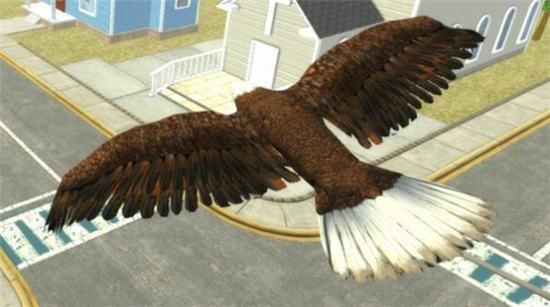 飞鹰模拟器2021最新版