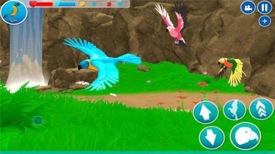 小小鹦鹉模拟器游戏下载