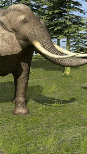 野生动物生活模拟器完整版