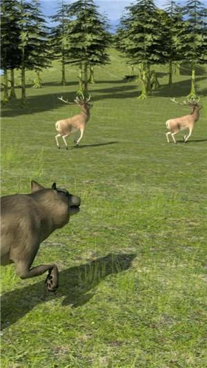 野生动物生活模拟器最新版下载