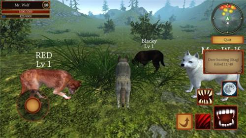 狼模拟进化破解版下载