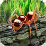 蚂蚁生存模拟器中文汉化版